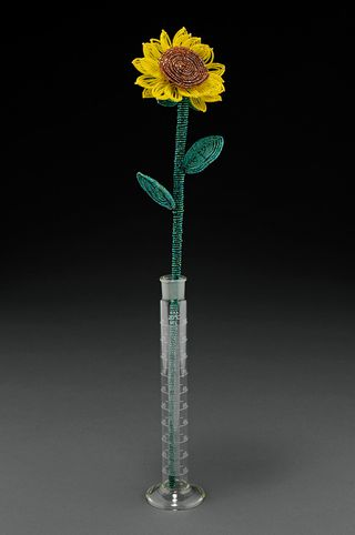 ©2010 Lindsay Obermeyer Sunflower photo by Larry Sanders