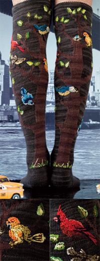 Editor-socks