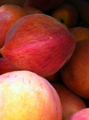 ©2012 Lindsay Obermeyer Peaches