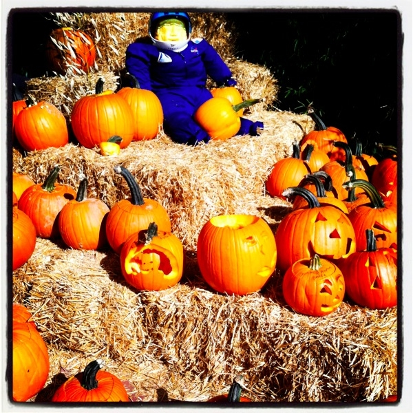 ©2013-Lindsay-Obermeyer-Happy-Halloween-Pumpkins