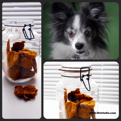 ©2016-Lindsay-Obermeyer-homemade-dog-biscuit- collage