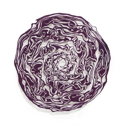 Red-Cabbage-masked-1000-web by Meredith Woolnough