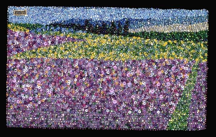C_lindsay_obermeyer_purple_field