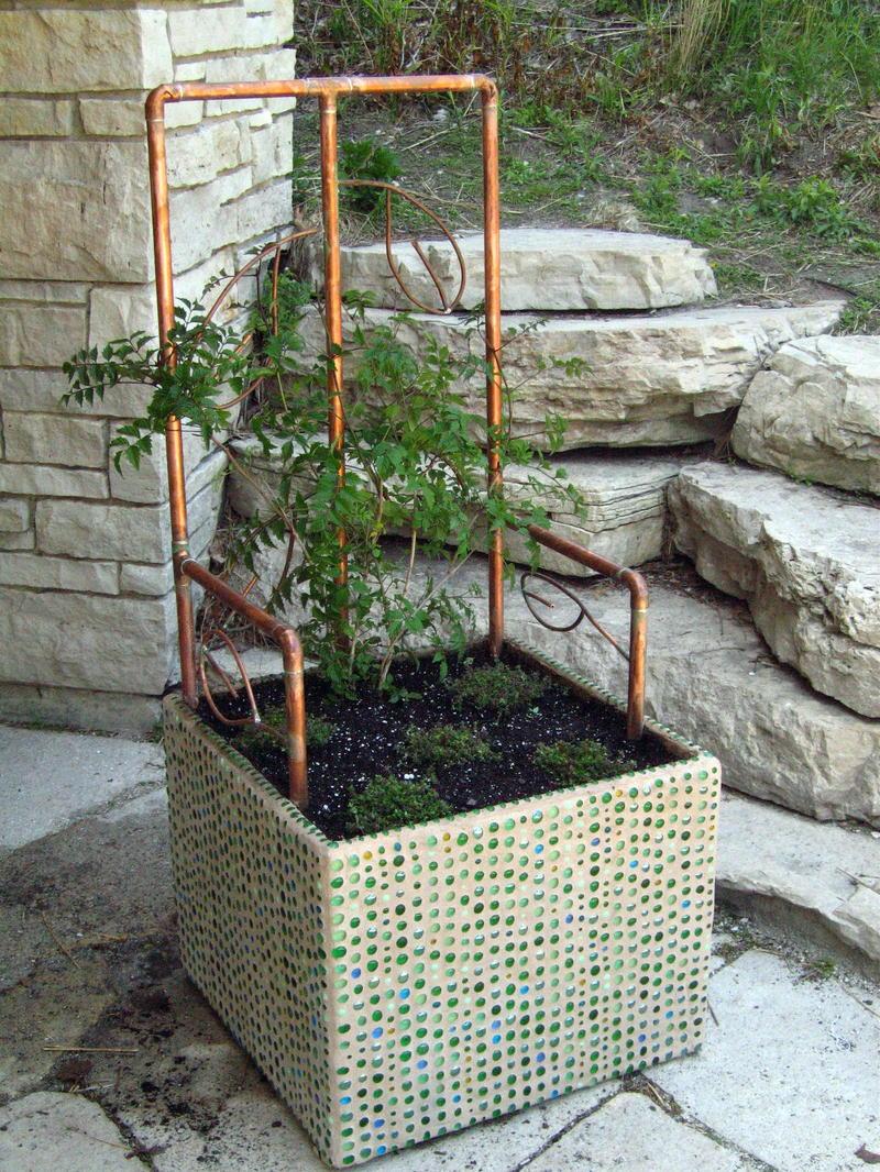 C_lindsay_obermeyer_throne_planted